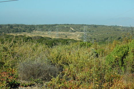 Fort Ord Open-Space Ballot Campaign Reports Finances; Rival Initiative Misses ... - Monterey County Weekly (blog) | parks, trails, open sapce | Scoop.it