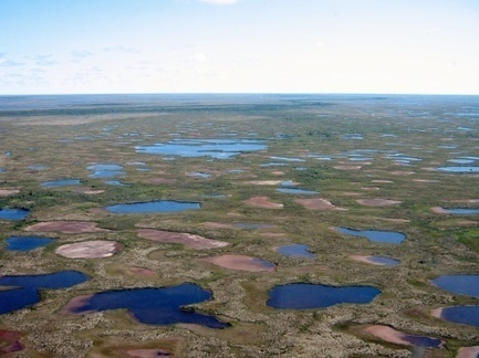 Subarctic lakes are drying up at a rate not seen in 200 years « New Phoenix | De Natura Rerum | Scoop.it