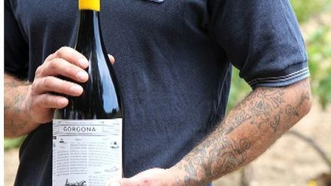 Would you try wine made by prisoners? - Fox News   Quirky wine & spirit articles from VINGLISH   Scoop.it