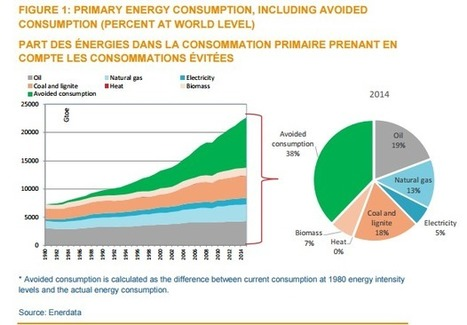 Energy Efficiency Rate Has to Double to Meet Climate Targets | Energy Efficiency News and Reviews | Scoop.it