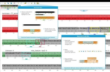 Genome Compiler - News - Genome Compiler Update! | SynBioFromLeukipposInstitute | Scoop.it