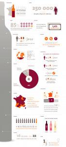 Le vin en France. Une infographie a consommer sans modération. | Les infographies ! | Scoop.it
