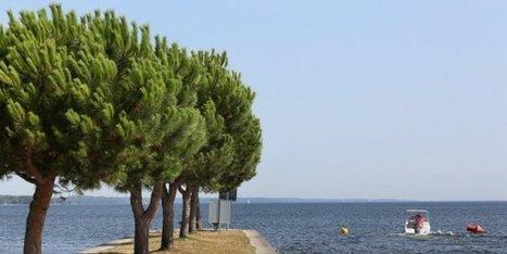 Médoc Océan : l'office de tourisme lance un site deséjour personnalisé | Actu Réseau MONA | Scoop.it