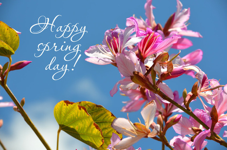 Best happy spring day greetings ecards images best happy spring day greetings ecards images gif quotes 2017 happy holi 2017 images wishes sms holi pictures messages wallpapers m4hsunfo