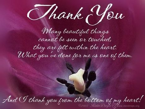 Thank You Quotes For Friends Images Gifts