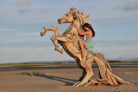 Driftwood Sculpture an Addition to the Innovative Eco Art | Architecture and Sculptures | Scoop.it