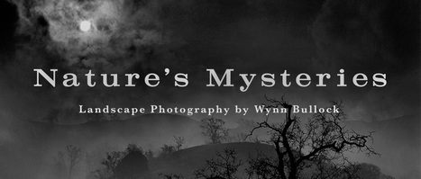 Nature's Mysteries: Landscape Photography by Wynn Bullock | www.flysfo.com | Inspirational Photography to DHP | Scoop.it
