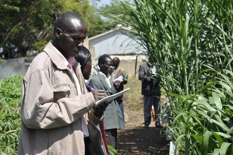Outscaling climate-smart agriculture in East Africa | CCAFS: CGIAR research program on Climate Change, Agriculture and Food Security | Climate Smart Agriculture | Scoop.it