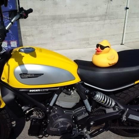 DUCK DERBY Ducati Scrambler for Boys & Girls Clubs | Ductalk Ducati News | Scoop.it