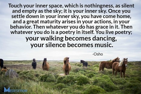 10 Amazing Mindfulness Quotes - About Meditation | About Meditation | Scoop.it