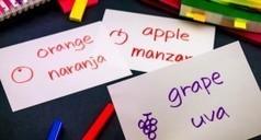 Ocho herramientas para crear tarjetas didácticas o flashcards | Las TIC en el aula de ELE | Scoop.it