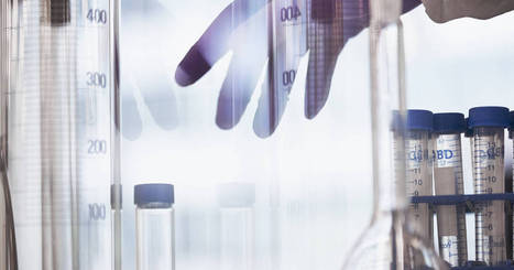 Careers in Scientific Research : Stalling Progress for Women | Women and science | Scoop.it