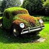 Ecologie et automobile