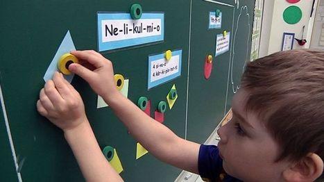 Kekseliäisyyttä ja metelinsietoa – kirjaton opetus tuo tuloksia, mutta vaatii opettajalta uusia ulottuvuuksia   Erityistä oppimista   Scoop.it