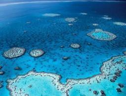 Protected areas in the ocean now exceed size of Europe   Ocean News   Scoop.it