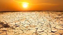 Climat: le monde plus 4 (degrés) - Journal de l'environnement | Communiqu'Ethique sur la santé et celle de la planette | Scoop.it