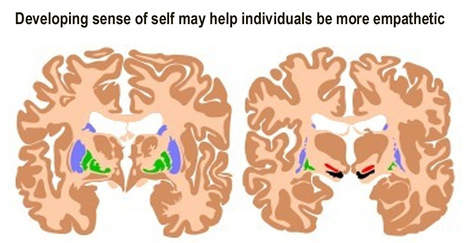 Developing sense of self may help individuals be more empathetic | Building Effective Relationships With Students | Scoop.it