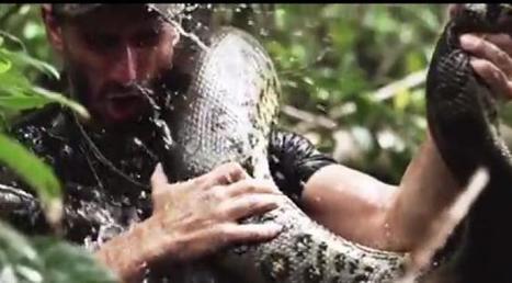 Eaten Alive : le naturaliste Paul Rosolie explique pourquoi il a laissé un anaconda le dévorer vivant | Evolution et développement | Scoop.it