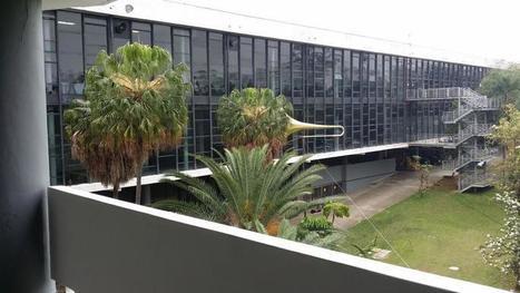 La Biennale de Sâo Paulo a une forme olympique | Art contemporain et culture | Scoop.it