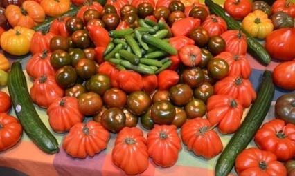 L'UE vote un budget de 172 M€ pour promouvoir ses produits agroalimentaires