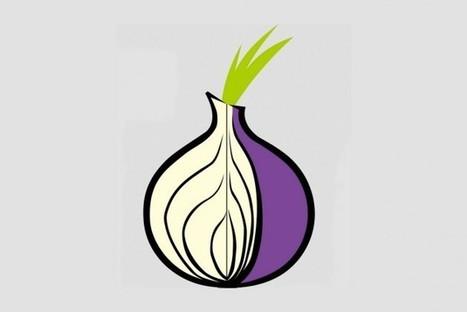 Le « Dark Web » gagne ses lettres de noblesse | Veille Hadopi | Scoop.it
