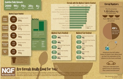 Are Cereals Really Good For You? | Chronic Kidney Disease | Scoop.it