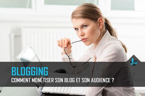 Comment monétiser son blog et son audience ? | Web information Specialist | Scoop.it