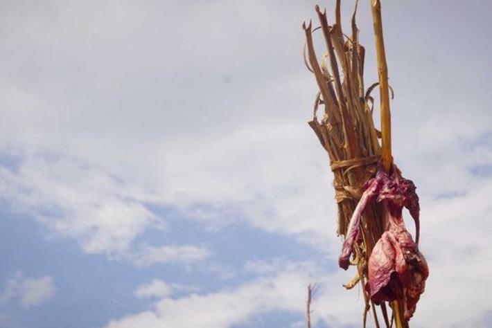 Tribal circumcision ritual becomes Africa's latest tourist attraction | ABC (Australie) | Kiosque du monde : Afrique | Scoop.it