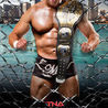 PPV WWE