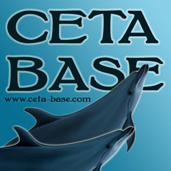 Ceta-Base: Captive Killer Whales (Living) - North America | Animals in captivity - Zoo, circus, marine park, etc.. | Scoop.it