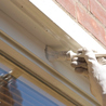 Exterior Painting Tips and Tricks