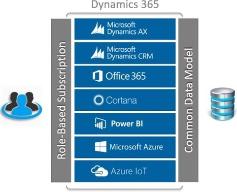 Microsoft Cloud - Cloud ERP - CRM on Cloud - AX on Cloud - Levtech Dubai | Cyrus | Scoop.it