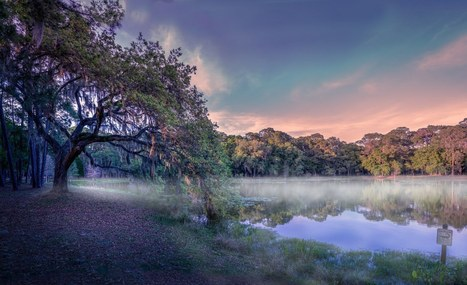 Add fog and mist to a photo in Photoshop | Photoshop Photo Effects Journal | Scoop.it