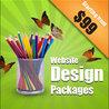 Website Design Packages | Website Design Cost | Website Design Pricing