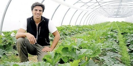 Biterrois : les insectes, meilleurs alliés de l'agriculture bio | pour mon jardin | Scoop.it
