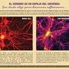 blogs de medicina