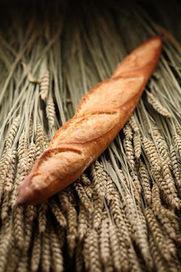 Quel avenir pour la boulangerie artisanale ? | Fêtes Gourmandes | Scoop.it