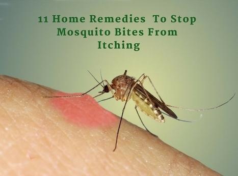Top 6 Natural Home Remedies to Treat Paronychia