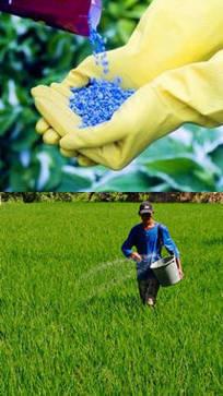 Fertilizantes: diferentes clases y precios | Química ciencia tecnología y sociedad | Scoop.it