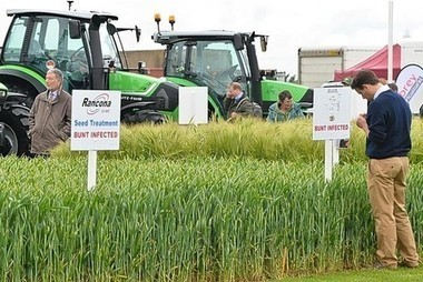 Cereals Event practical trial plots to cover 13 areas of arable research | Articles mentioning John Innes Centre | Scoop.it