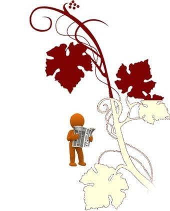 Vin Valençay et Touraine - Vins rouge, rosé et blanc - Francis Jourdain - Saveur de saison | Accord Mets-Vins avec les vins de Loire | Scoop.it