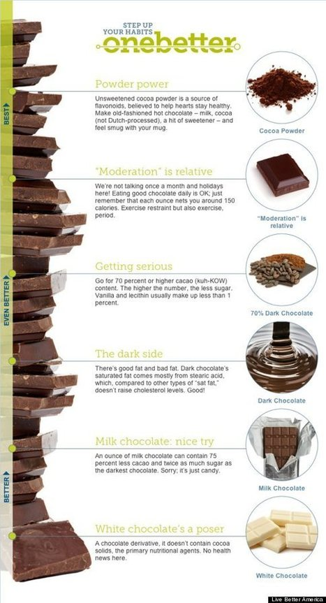 Which Chocolate Is Best for You? (INFOGRAPHIC) | Infographic Times | Scoop.it