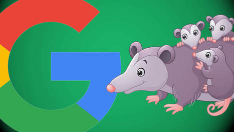 Google's Possum update changed 64% of local SERPs | Real SEO | Scoop.it