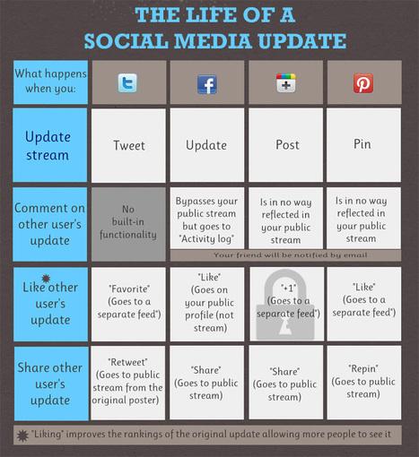 The Life of the Social Media Update: Facebook, Google Plus, Twitter & Pinterest | Online Marketing Resources | Scoop.it