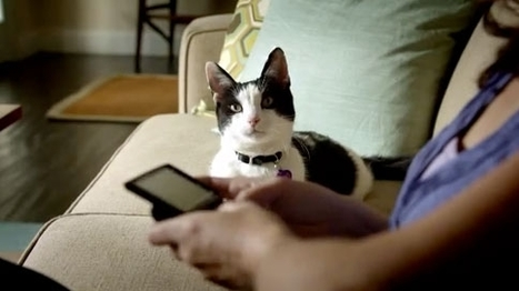 Pets Try to Figure Out Their Owners in Adoption Ads | Adweek | Psychology of Consumer Behaviour | Scoop.it