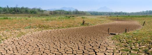 COP 22: un petit pas vers la prise en compte de l'eau