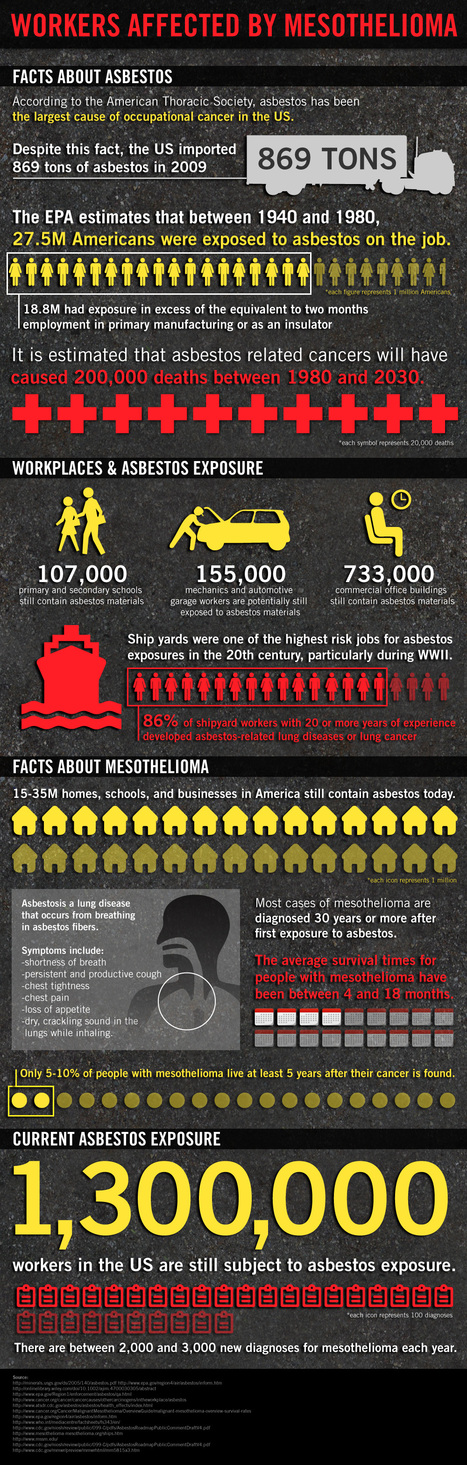 Asbestos Kills American Workers [Infographic] | Infographics and Social Media | Scoop.it