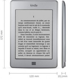 Que penser des liseuses numériques ?   Another day in Paradise   Liseuses et tablettes dans les BM de Grenoble   Scoop.it