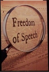 The First Amendment to the Constitution: Freedom of Speech | David J. Shestokas | Gov & Law Project | Scoop.it
