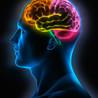 Curso #ccfuned: teoría de las inteligencias múltiples (Howard Gardner)
